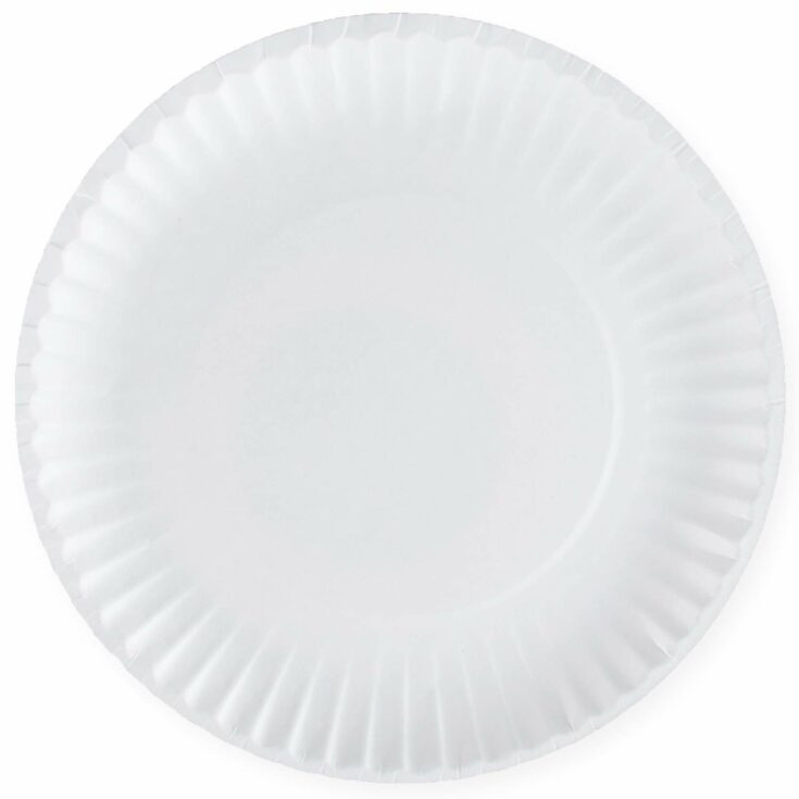 Disposable White Uncoated Paper Plates, 9 Inch Large