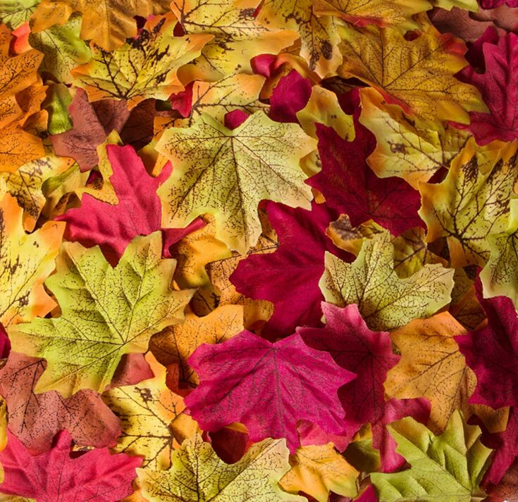 Bassion 1000 Pcs Assorted Mixed Fall Colored Artificial Maple Leaves
