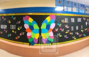 You Can Fly Bulletin Board