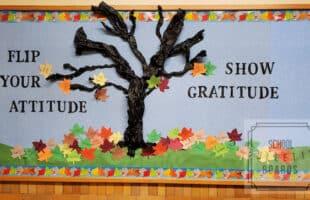Falling Into Gratitude